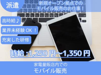 徳島市【販売職(家電量販店内でのモバイル